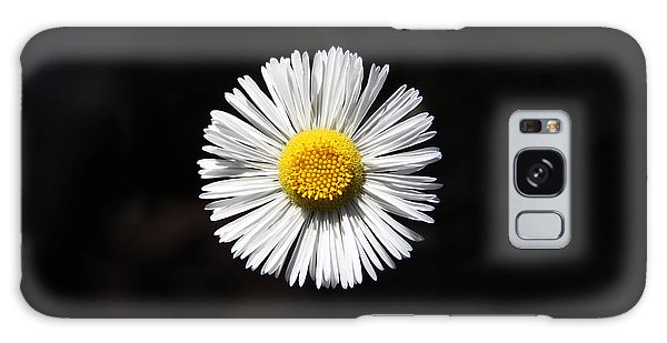 Tidy Fleabane Galaxy Case by Charles Ables