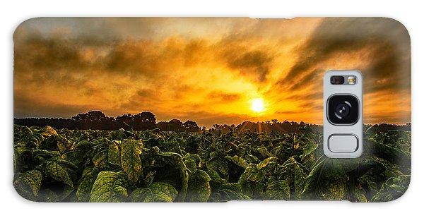 Tobacco Sunrise  Galaxy Case