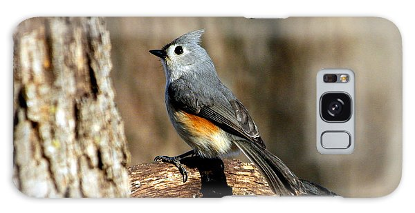 Tufted Titmouse On Branch Galaxy Case