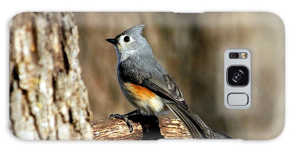 Tufted Titmouse On Branch Galaxy Case by Sheila Brown