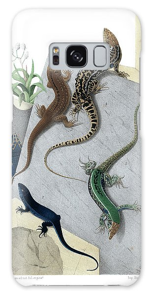 Varieties Of Wall Lizard Galaxy Case