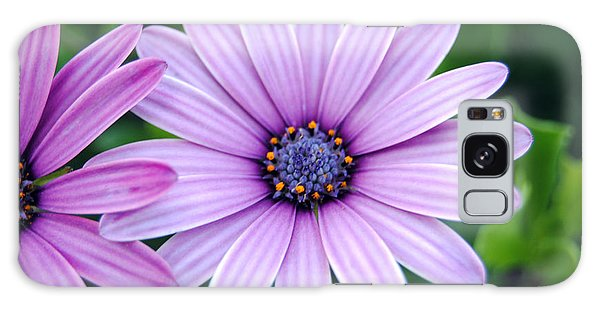 The African Daisy 3 Galaxy Case