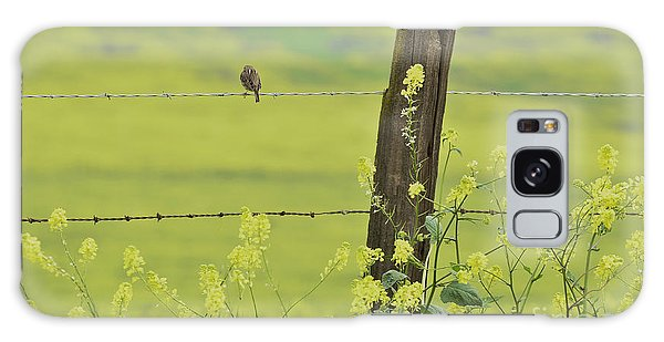 Warbler In The Meadow Galaxy Case