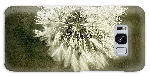 Beam Galaxy Case - Water Drops On Dandelion Flower by Scott Norris