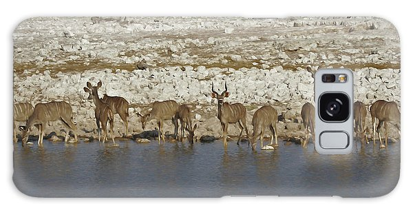 Waterhole Kudu Galaxy Case by Ernie Echols