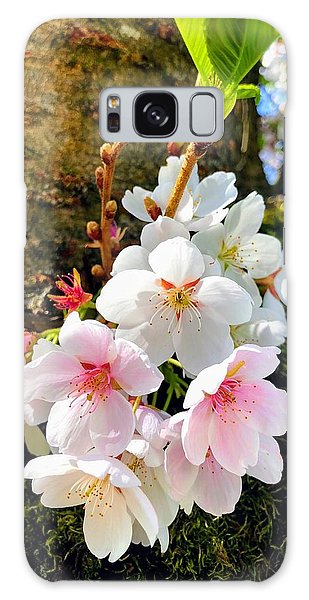 Food And Beverage Galaxy Case - White Apple Blossom In Spring by Matthias Hauser