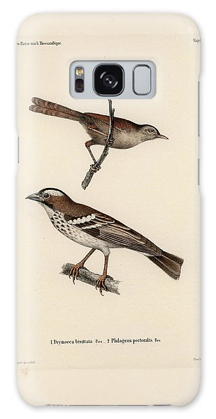 White-browed Sparrow-weaver And Grass Or Bush Warbler Galaxy Case