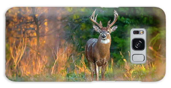 Whitetail At Sunset Galaxy Case