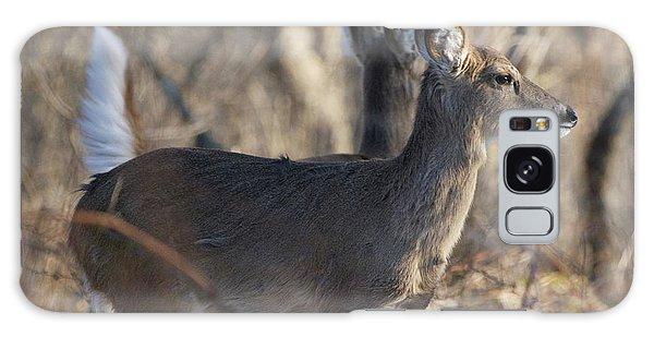 Wild Deer Galaxy Case