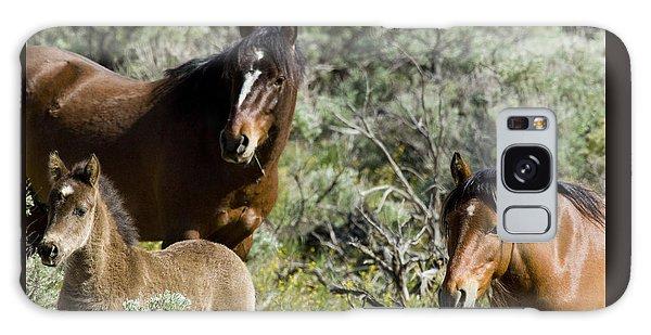 Wild Mustang Herd Galaxy Case
