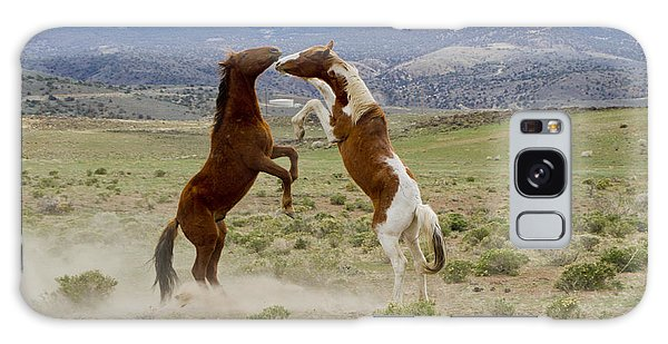 Wild Mustang Stallions Sparring Galaxy Case