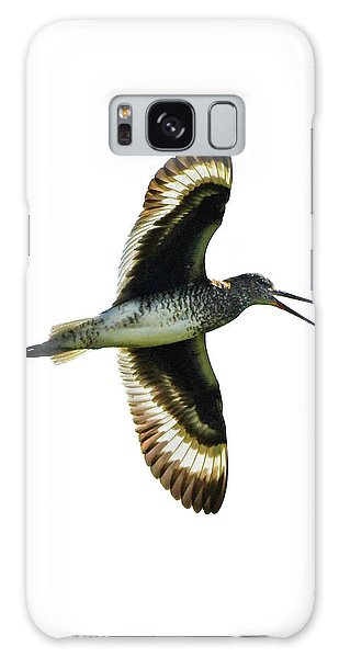 Galaxy Case featuring the photograph Willet by Ken Stampfer