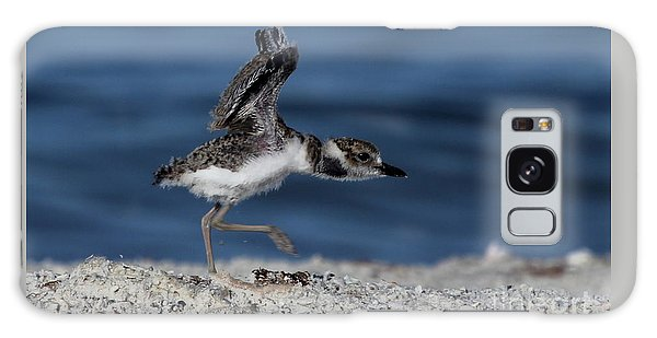 Wilson's Plover Galaxy Case by Meg Rousher