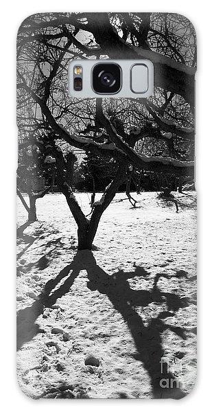 Galaxy Case featuring the photograph Winter Shadows by Yulia Kazansky