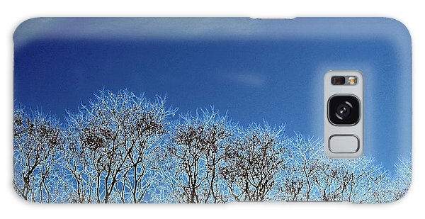 Winter Trees And Sky 3  Galaxy Case