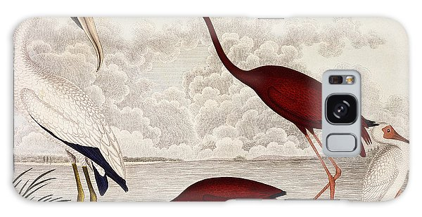Wood Ibis, Scarlet Flamingo, White Ibis Galaxy Case
