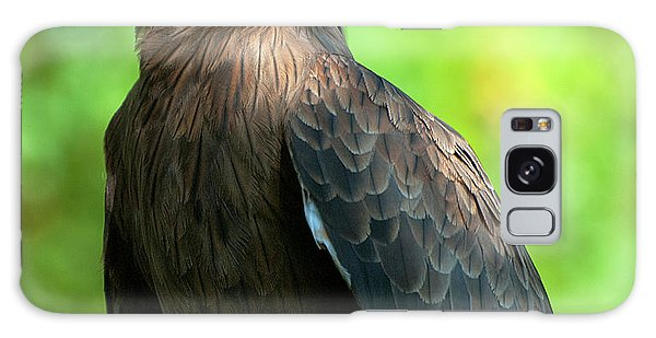 Yellow-billed Kite Galaxy Case