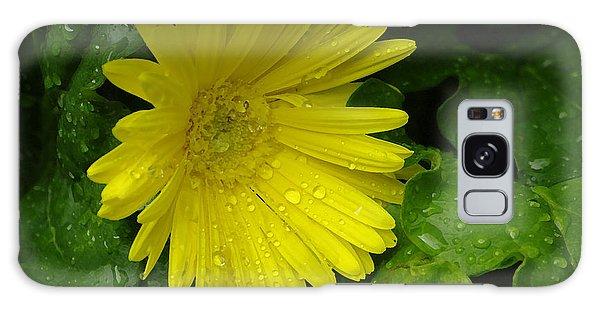 Yellow Gerbera Daisy  Galaxy Case
