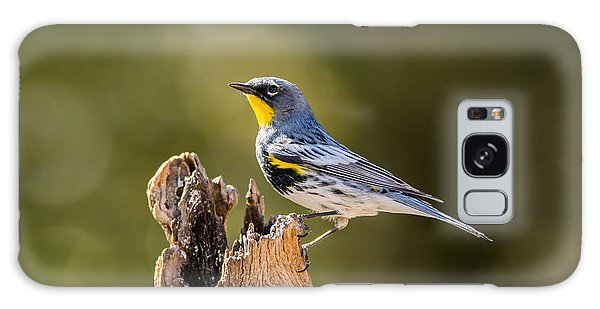Yellow-rumped Warbler Galaxy Case
