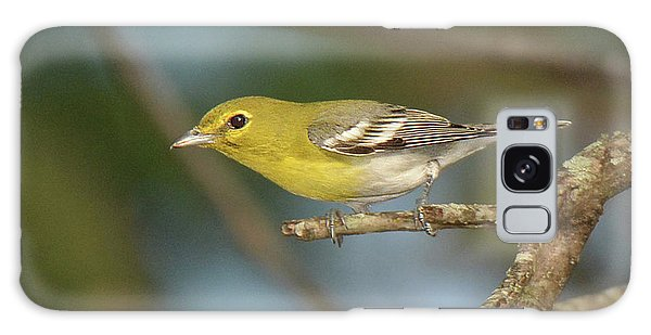 Yellow-throated Vireo Galaxy Case