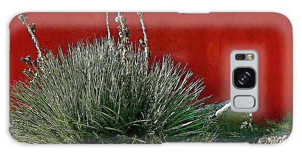 Yucca And Adobe Galaxy Case