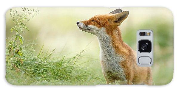 Wild Animals Galaxy Case - Zen Fox Series - Zen Fox by Roeselien Raimond