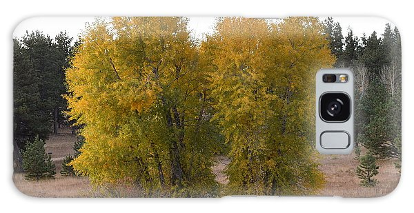 Aspen Trees In The Fall Co Galaxy Case