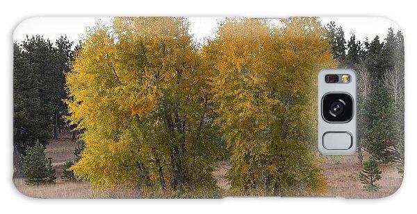 Aspen Trees In The Fall Co Galaxy Case