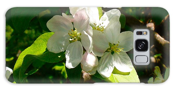 Apple Blossoms Galaxy Case