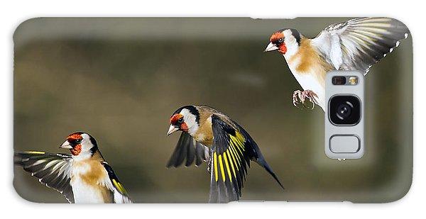 Bird Galaxy Case