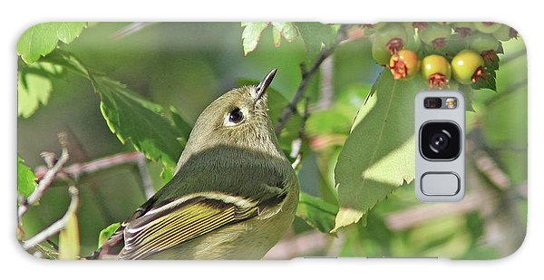Ruby-crowned Kinglet Galaxy Case