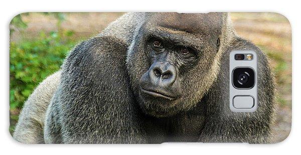10898 Gorilla Galaxy Case