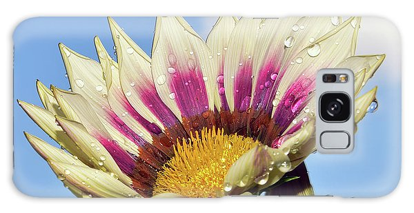 Nice Gazania Galaxy Case by Elvira Ladocki
