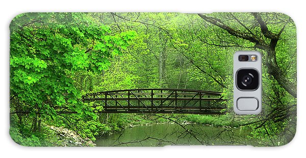 Jacobsburg State Park Pa Galaxy Case