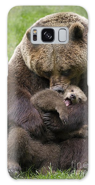 Mother Bear Cuddling Cub Galaxy Case by Arterra Picture Library