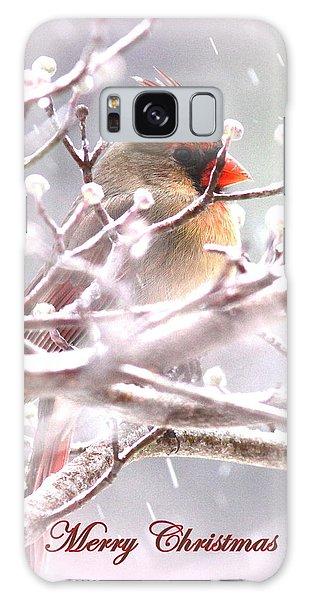 1554-003 Cardinal Galaxy Case