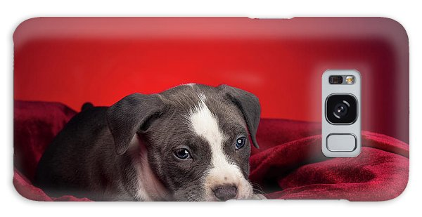 Galaxy Case featuring the photograph American Pitbull Puppy by Peter Lakomy