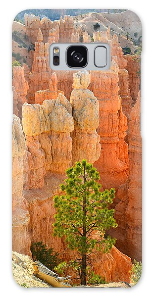 Fairyland Canyon Galaxy Case