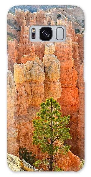 Fairyland Canyon Galaxy Case