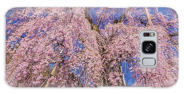 Galaxy Case featuring the photograph Miharu Takizakura Weeping Cherry20 by Tatsuya Atarashi