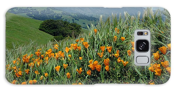 1a6493 Mt. Diablo And Poppies Galaxy Case