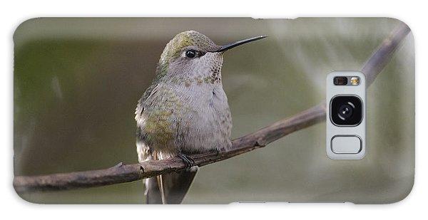 Anna's Hummingbird Galaxy Case by Kathy King