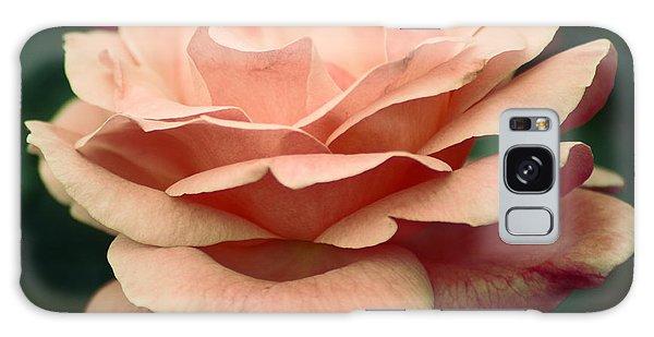 Antique Rose Galaxy Case by Donna Bentley
