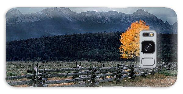 Autumn Light Galaxy Case