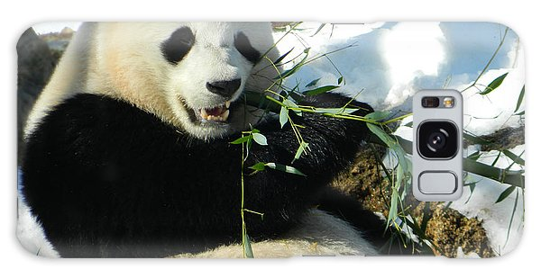 Bao Bao Sittin' In The Snow Taking A Bite Out Of Bamboo1 Galaxy Case