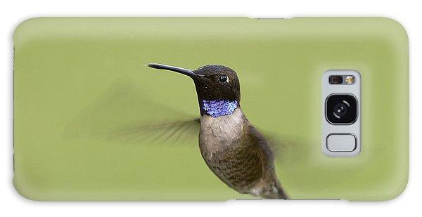 Black-chinned Hummingbird Galaxy Case