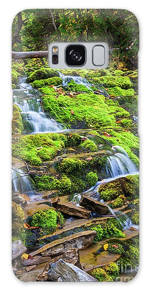 Galaxy Case featuring the photograph Cascading Waterfall by Elena Elisseeva
