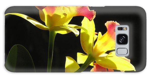 Cattleya Orchid Galaxy Case