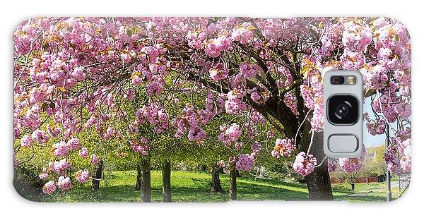 Cherry Blossom Tree Galaxy Case