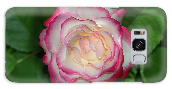 Cherry Parfait Rose Galaxy Case by Glenn Franco Simmons